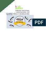 Logos Pnipa