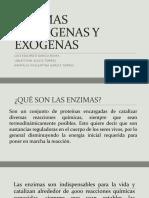 Enzimas Endógenas y Exogenas