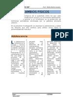 PRACTICA 03_D