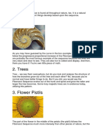 The Fibonacci Sequence is Found All Throughout Nature