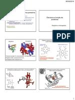 4 Estrutura e Função Proteínas