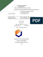 Laporan Praktikum STHE- DPHE