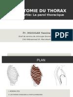 Anatomie  Paroi Thoracique