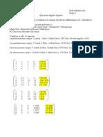 proyecto final álgebra superior