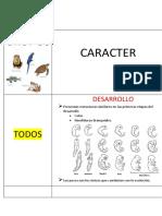 VERTEBRADOS.docx