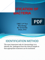118085761-Identification-of-Bacteria.pdf