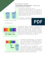 Conceptos Básicos de Los Ácidos y Las Bases