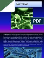 diapositivasbacterias-121030112935-phpapp01.pptx