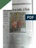 Article Poule PDF