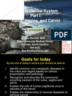 05.31.2 Pathology of the Female Reproductive System I Final
