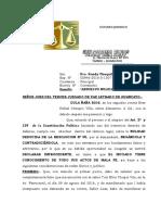 ABSOLUCION NULIDAD DE DULA.doc