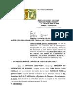 DEMANDA DE USURPACION DE NOMBRE.doc