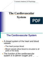 Cardiovascular 101021070055 Phpapp01