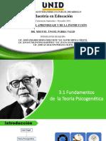 Fundamentos de La Teoría Psicogenetica