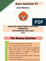 = Axial Skeleton =