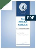 Pae Practica III