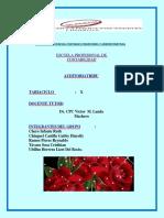 10_CASO PRACTICO DE  FISCALIZACION DE EMPRESAS-Grupo corregido.docx