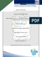 PROYECTO de VIAS TERRESTRES_Justificación y Memoria Descriptiva