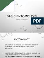 basic entomology