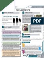 2. PERFIL DE PROYECTO.pdf