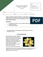 Evaluación 3º %22Partes de la planta%22 AGOSTO.docx
