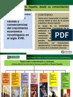 El Auge de La Economia Novohispana 1