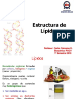 Sesion 09-10-11-Metabolismo Lipidos-1s2019 RED