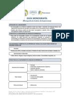 2. UCB_Guía_Monografía Análisis de Experiencias