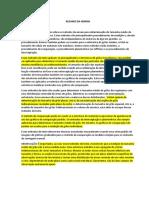 RESUMO DA NORMA.docx