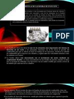 expo-bombas-unidas.pptx