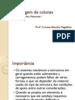 Flambagem_de_colunas.pdf