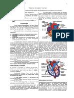 circulatoriohumanotalleryeval-141124073446-conversion-gate02 (1).doc