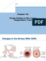 Drugs acting on lower respiratory