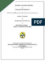 web development report