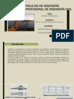 Puente Atirantado Davila y Gonzales