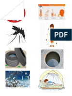 Imagenes Paludismo