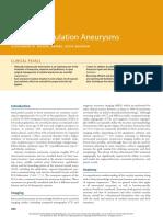 17 Anterior Circulation Aneurysms