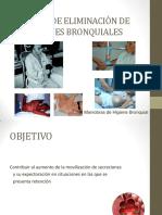 Técnicas de Eliminación de Secrecoines.pdf 20015