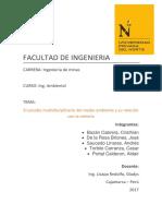 Informe Arreglado. Ing Ambiental.docx