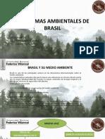 problemas ambientales brasil