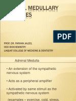 Adrenal Medullary Hormones