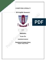 BS.B Computer Literacy