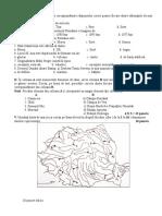 test clima si hidrografia cls 8.doc