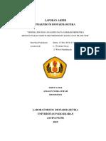 260110160161 Anggun Nurlatifah PK Solver