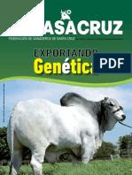 REVISTA-FEGASACRUZ-No-11.pdf