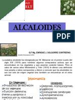 Clase 8 Fitoquimica Alcaloides 2019-II