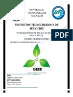 proyectos tecnologicos y de servicios integradora geer