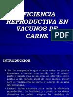 Eficiencia Reproductiva en Vacunos de Carne