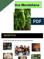 GenEtica Mendeliana Para Genética Geral I 2015