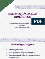 RISCOS OCUPACIONAIS BIOLÓGICOS
